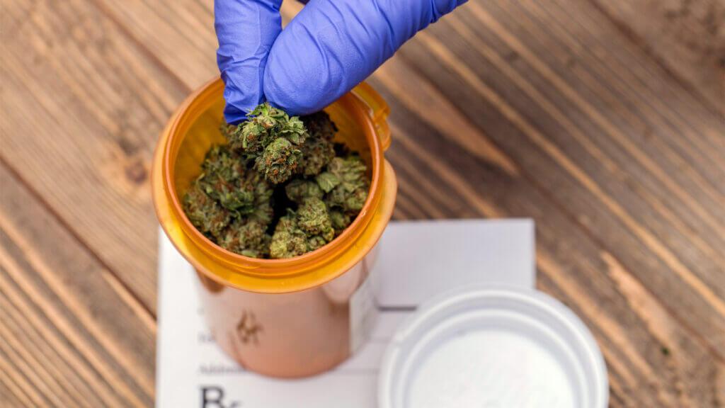 Elevate Holistics Medical Marijuana Doctors