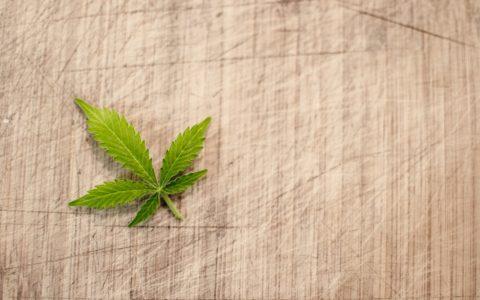 Medical Marijuana and Anxiety