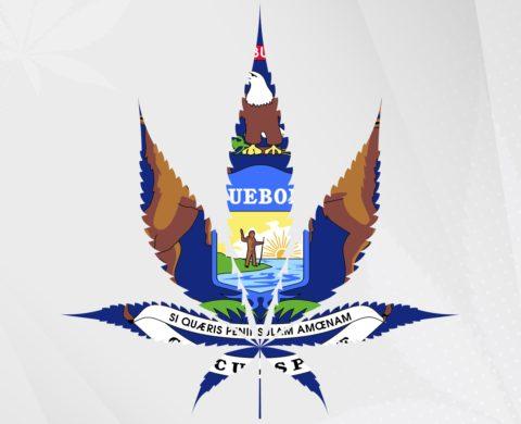 Michigan Cannabis Laws: MI Regulates Delta-8