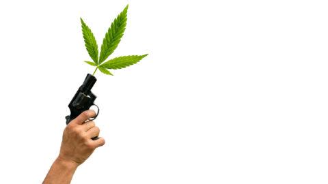 Montana Medical Card and Gun Laws