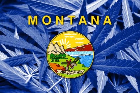 Montana Medical Marijuana Laws