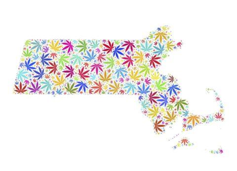 Your Ultimate Guide to Medical Marijuana Massachusetts